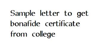 Apply The Right College Application Essay Format EssayPro